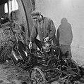 Drooglegging van de Wieringermeerpolder Boer schildert een landbouwwerktuig, Bestanddeelnr 900-8342.jpg