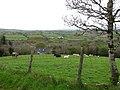 Drumnamalra - geograph.org.uk - 411397.jpg