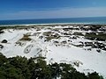 Dueodde, wydmy i plaża, widok z latarni - panoramio.jpg
