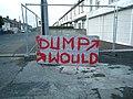 Dump Wood^ - geograph.org.uk - 485117.jpg