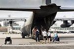 Dutch C-130 Hercules.jpg