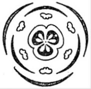 Fritillaria - Floral diagram of Fritillaria flower