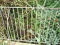 East Devon , Little Stream - geograph.org.uk - 1476782.jpg