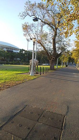 Elder Park - Elder Park from King William Street