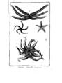 Encyclopedie volume 5-116.png
