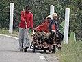 Enfants De Madagascar Children From Madagascar (130873335).jpeg