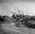 Ensimmäinen maailmansota - N1813 (hkm.HKMS000005-0000016u).jpg