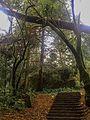Escaleras hacia Ermita.jpg