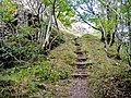 Escalier d'accès au Freundstein.jpg