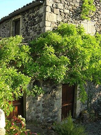 Alba-la-Romaine - The Village