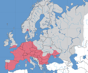 Pumpkinseed - Invasive range of the pumpkinseed in Europe (in red)