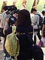 FF Taichung NTDAPTV press 20131116.jpg