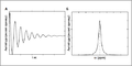 FID and NMR signal.png