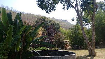 FLORA OF THE KAPURBAWLI.jpg