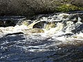 Falls on the Strathrory River - geograph.org.uk - 1803775.jpg