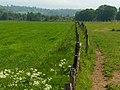 Farmland, Ochtertyre - geograph.org.uk - 184275.jpg