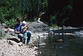 Father and Son fishing Clackamas River (35529967013).jpg