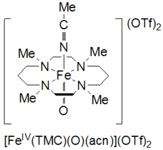 High-valent iron - tetramethylcyclam supported oxoiron(IV)