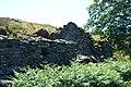 Ffridd Wen ruins - geograph.org.uk - 202727.jpg