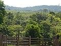 "Finca ""AQUI ME QUEDO"", Siuna, RAAN, Nicaragua. - panoramio.jpg"