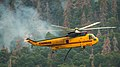 Firefighting Aircraft at the Cedar Fire, Sequoia National Forest. (31038526745).jpg
