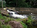 Fish Ladder at Otterton Devon - geograph.org.uk - 906185.jpg