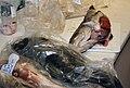 Fisk til analyse (4646721293).jpg