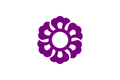 Flag of Fujieda, Shizuoka.png