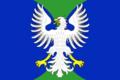 Flag of Kotkozerskoe (Karelia).png