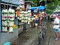 Flowers at Matunga.jpg
