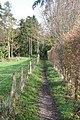 Follow the hedge - geograph.org.uk - 1629389.jpg