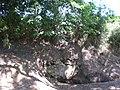 Font dels Pagesos (maig 2011) - panoramio.jpg