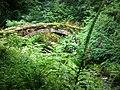 Footbridge, Cragside Estate - geograph.org.uk - 920118.jpg