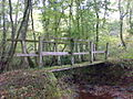 Footbridge over Nant yr Hiddl - geograph.org.uk - 639558.jpg