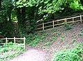 Footpath leading from Weir - Avoncliff - geograph.org.uk - 944130.jpg