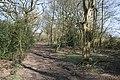 Footpath near Dod's Leigh - geograph.org.uk - 395985.jpg