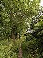 Footpath near Sproatley - geograph.org.uk - 470044.jpg