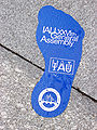 Footprint IAU2006GA.jpg