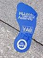 Footprint IAU2006GA.jpg