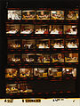 Ford A5167 NLGRF photo contact sheet (1975-06-22)(Gerald Ford Library).jpg