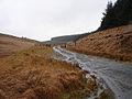 Forestry track to Esgair Gerwyn - geograph.org.uk - 290963.jpg