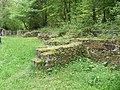 Foret de Bonneval, Vosges, France - panoramio (15).jpg