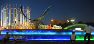 Fountain moscow europe square night bird