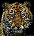 Fractal Tiger Cub (12440210983).jpg