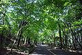 Futatabi park02n4592.jpg