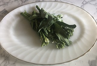 Gai lan type of leaf vegetable in the brassica family