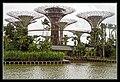 Gardens by the Marina Bay-06 (8320365135).jpg