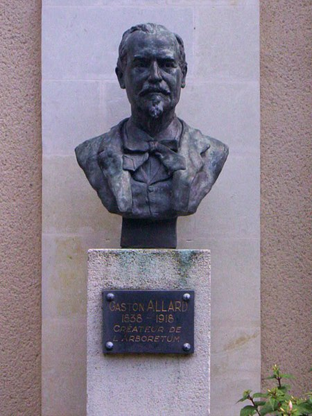 English:  Bust of Gaston Allard (1838-1918) made by H. Seguin, visible in the Arboretum of Angers, Maine-et-Loire, Pays de la Loire, France.
