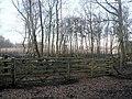 Gated enclosure, near Fleet Pond - geograph.org.uk - 1202552.jpg