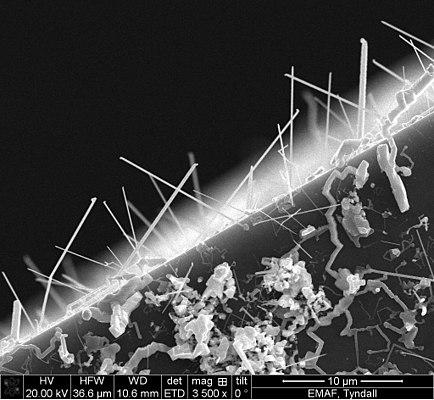 Germanium Telluride nanowires.jpg
